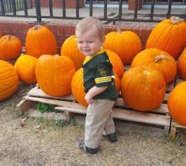 Aden pumpkin