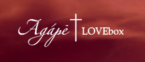 Agape Love Box review